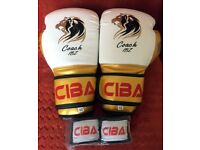 10 OZ Boxing Gloves Entry Level High Quality & Spec. plus FREE Hand wraps MMA