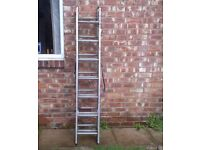 Professional Triple Extension Metal Ladder