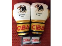 10-OZ-Boxing-Gloves-Entry-Level-High-Quality-amp-Spec-plus-FREE-Hand-wraps