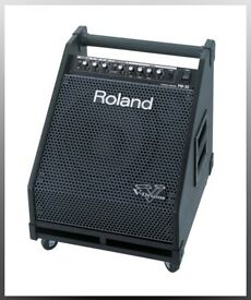 ROLAND V Drums PM-30 amp monitor 100 watts monitor cab multiple inputs wheels LOUD