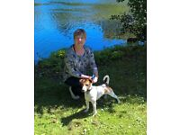 Dog walker/Pet & House sitter available in Exeter area