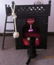DOG/CAT KENNEL PLAYCENTRE