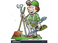 Handy man, Gardener (South London,Surrey )