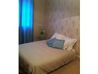 Single room available in the heart of Cheltenham for short term or long term let