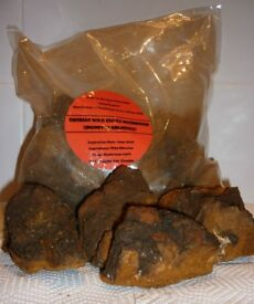 Siberian Wild Chaga Mushroom, to make a hugely healthy and beneficial tea.