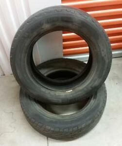 (Y68) 2 Pneus Ete - 2 Summer Tires 195-65-15 Michelin