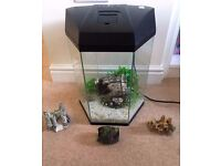 30 Litre Hexagonal Glass Fish Tank With Accessories