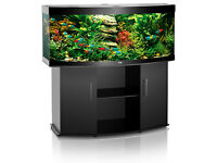 Juwel vision 260 litre with optional fish and lots of extras