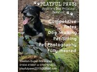 Playful Paws: Sophie's Dog Walking Service