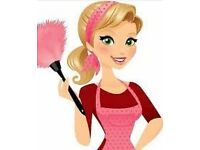 Domestic cleaner / ironing service