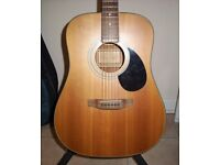 Freshman Acoustic Guitar, Guitar Case, Guitar Stand, spare strings and picks