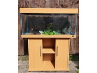 Juwel Rio 180 Litre Fish Tank with Stand in Light Wood
