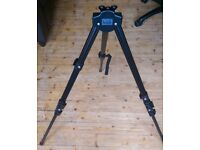 Cheap Tripod, pinatel 150, extendable, lightweight with carry case