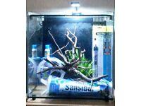 Aqua one marine/freshwater tank full setup