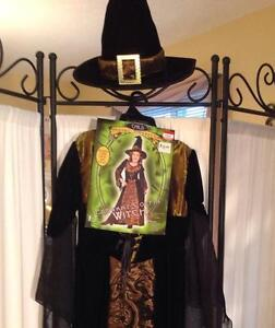 Witch Costume Kitchener / Waterloo Kitchener Area image 3
