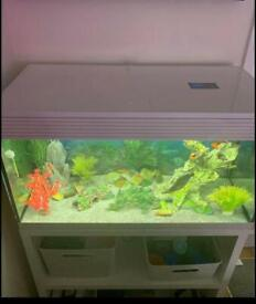 Ask I'll pure XL 94 Litre Fish Tank And Stand