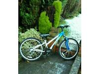 Girls mountain bike (18 gears)