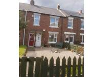 Flat 2 bed lower birtley