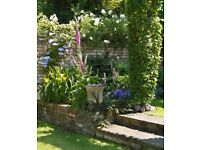 4 hours on Saturdays, £8 ph, to help maintain small garden in Central Cambridge