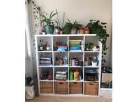 ikea kallax white cupboard bookshelf storage unit