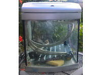 small fish tank (30cm x 30cm) with pump, tray and syphoning tube