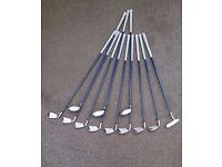 Ladies' Golf Set (Williams). Low usage, suit beginner lady/young teenager.