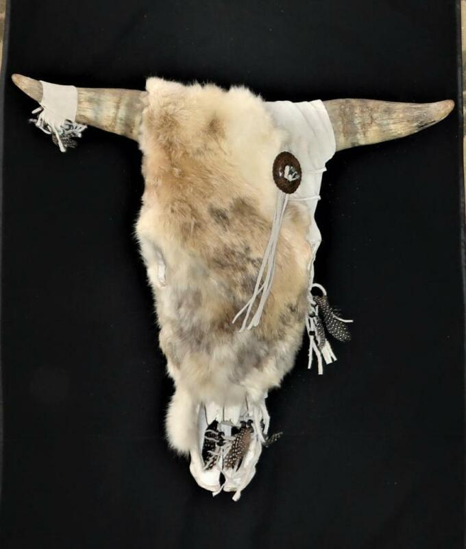 Cow Steer Skull with Fur and Symmetrical Horns, Native American