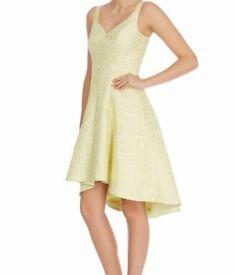 Dress. Women's Lemon (Lime) Dress By Coast.