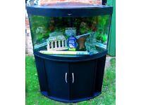 Juwel Trigon 190 Aquarium and Cabinet in black (corner tank)