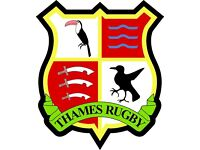 THAMES RUGBY IS LOOKING FOR PLAYERS