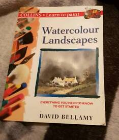 Collins Watercolour Landscapes book
