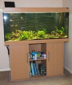 Juwel Rio 300 Aquarium and Cabinet