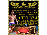 Professional wrestling training school