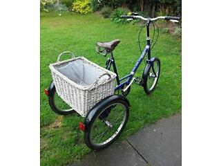 Pashley Picador Trike Tricycle Bike
