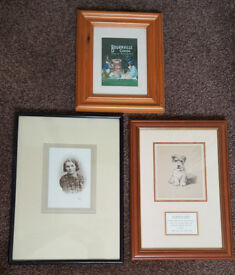 3 assorted Pictures in frames. All 3 for £5