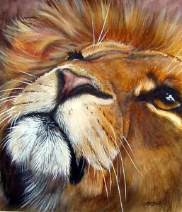 Lion Print Big Cat from painting by artist Helen Clark