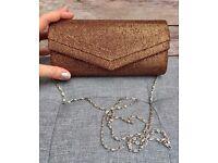 NEW Brown Shimmer Clutch Bag