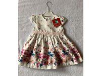 BNWT Baby Girl Summer Dress 3 - 6 Months