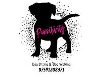 Pawsitivity Dog Walking, Dog Sitter & Doggy Day Care