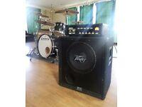 Peavey 115 Black Widow bass cab cabinet speaker 400w