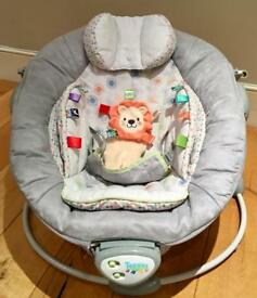 Taggies bouncy chair