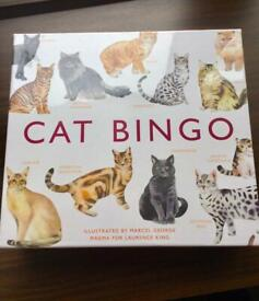 Brand new cat bingo