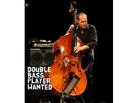 Double bass player wanted