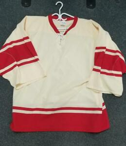 Detroit Red Wings Winter Classic Goalie Cut Practice Jersey