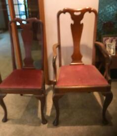 2 Antique Carvers 4 matching dining chairs