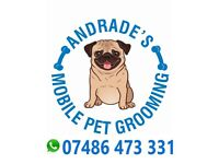Andrade's Mobile Pet Grooming