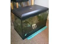 Fish tank for sale - amazing bargain