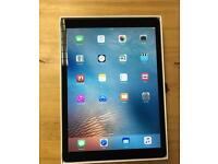 iPad Pro 12.9 inch Space Grey Wi-Fi Only