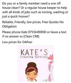 Housekeeper Cleaner Ironing