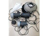 3 x Elinchrom D-Lite RX4 heads